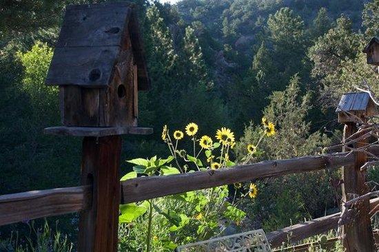 Mountain River Inn Bed & Breakfast: Bird House & Flowers-GL