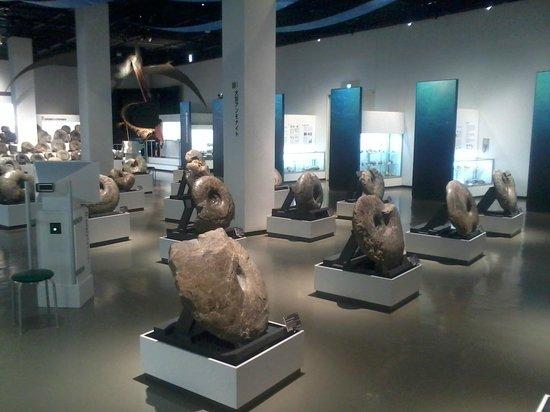 Mikasa City Museum