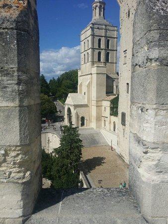 Palais des Papes : Dalla torre