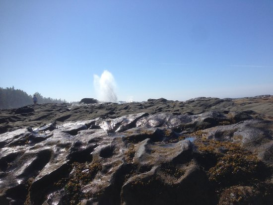 Tow Hill Provincial Park: Blowhole