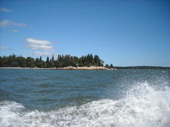 Downeast Coastal Cruises: Beautiful views