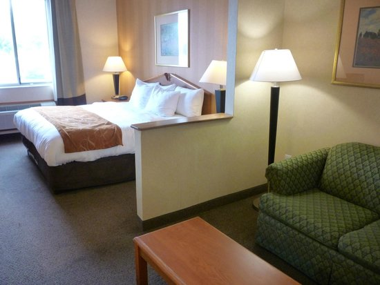 Comfort Suites NE Indianapolis-Fishers : King Suite