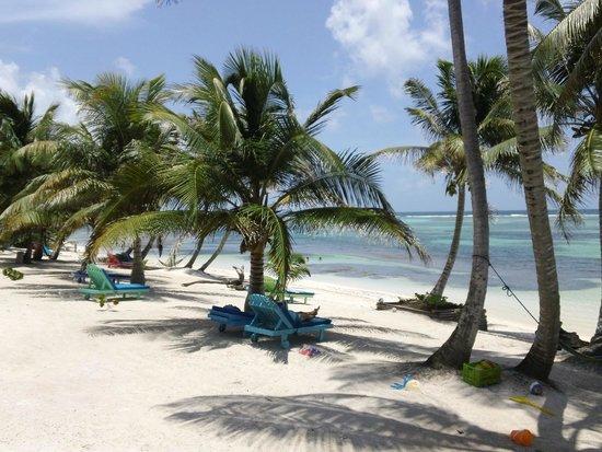 Tranquility Bay Resort: Resort grounds