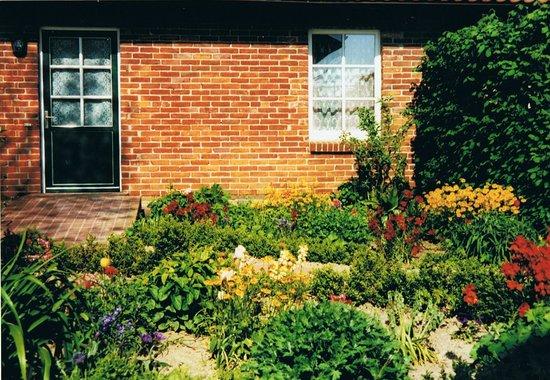 Blumen Im Vorgarten Bild Von Hof Kracht Putgarten Tripadvisor