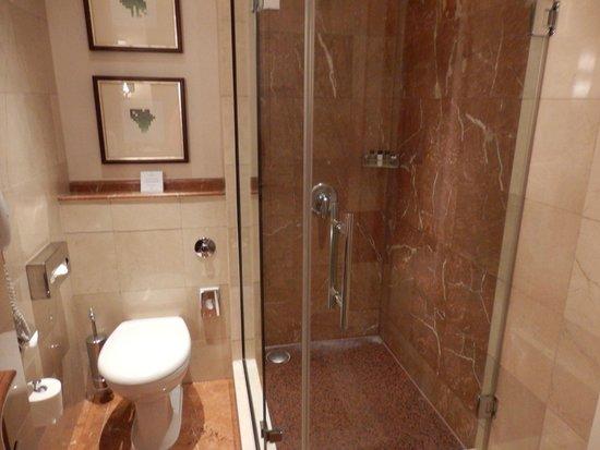 Corinthia Hotel Budapest : Fab shower