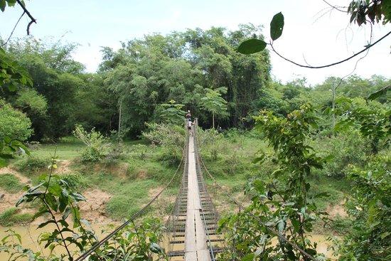 Bike Borneo: One of the bridges along the way