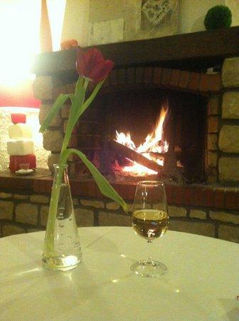 Hotel-Restaurant du Lac de Madine : Manger au coin du feu quel bonheur