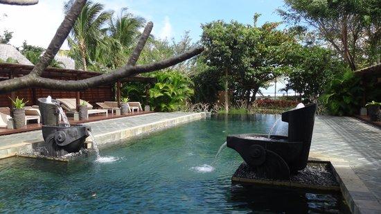 Shanti Maurice - A Nira Resort: Piscina do spa