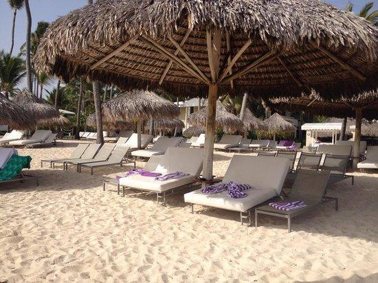 Paradisus Punta Cana : Beach Life
