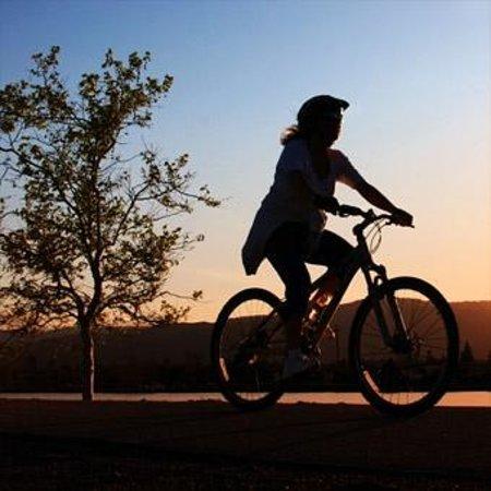 Praha Bike -  Bicycle Tours & Rentals : Кирилл