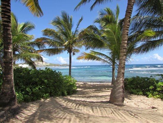 The Palms at Pelican Cove : Beach area