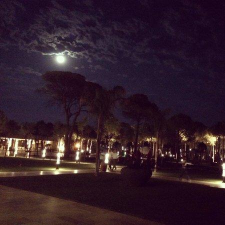 Regnum Carya Golf & Spa Resort: Akşam görüntüsü