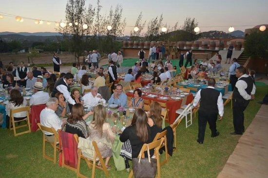 Vinisterra Vitivinicola: Cena Campestre en Vinisterra. Fiestas de la Vendimia, 2014.