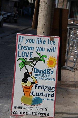 DandE's Frozen Custard & Sorbet : Sign outside shop