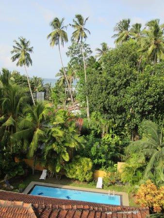 Black Beauty Guesthouse: Uitzicht vanaf restaurant