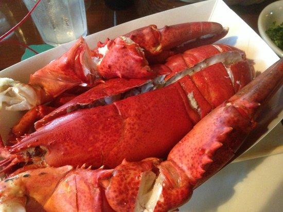 Ogunquit Lobster Pound Restaurant : Delicious Steamed Lobster