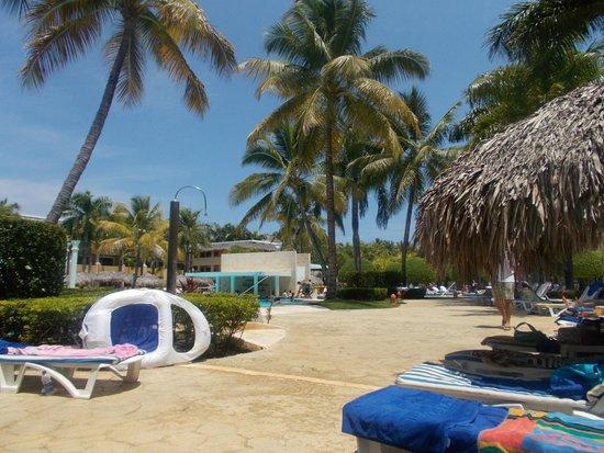 Iberostar Costa Dorada : Swim up bar