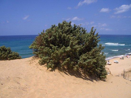 B&B Il Quinto Moro: Costa Verde
