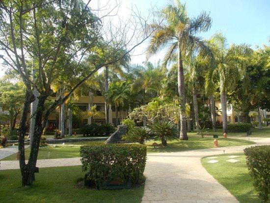 Iberostar Costa Dorada : Hotel grounds