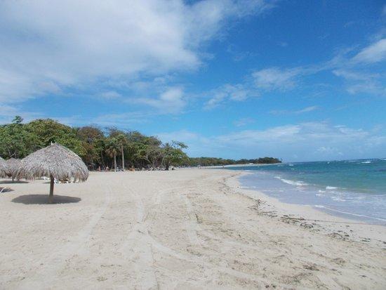Iberostar Costa Dorada : Beautiful beach