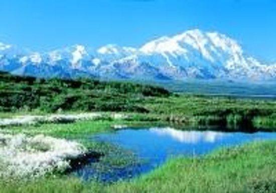 Adventure Alaska Tours: Denali