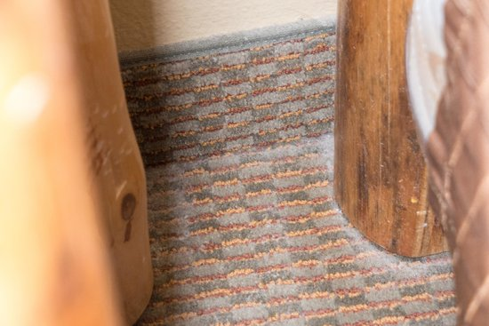 Great Wolf Lodge Kansas City: Filthy, dusty carpet.