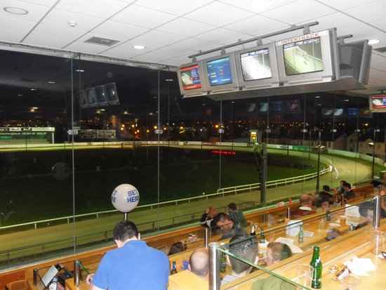Galway Greyhound Stadium : Great view