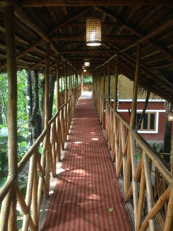 Pepper Green Village: Walkway connecting 'Cinnamon & Cassia' with 'Stevia'