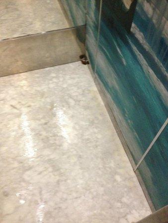 Estival Park Salou : Human poo in lift!!!