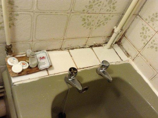 The Royal Ship Hotel : Rotten tiles at bathroom