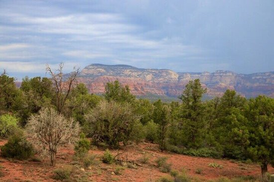 Sedona Summit Resort: View from balcony of building 41, unit 444 (2 bedroom Sunset suite)
