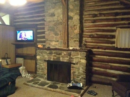 Seneca Lodge: Fireplace 4 bed log cabin