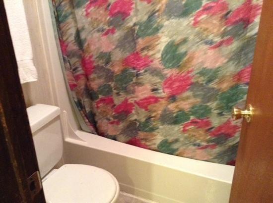Seneca Lodge: Bathroom/shower 4 bed log cabin