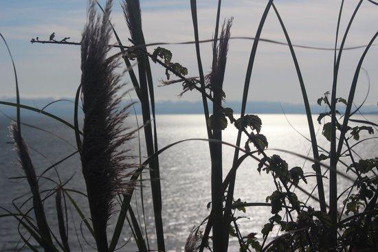Seascape Resort: Belissima paisagem.. de frente para o mar