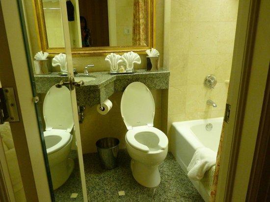 Hotel Monteleone: The tiny bathroom