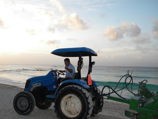 Barcelo Maya Colonial: They clean the beaches daily