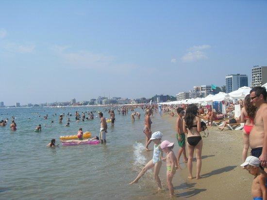 DIT Majestic Beach Resort : sunny beach