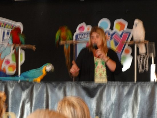 Hotel Aluasoul Alcudia Bay: Evening show for children