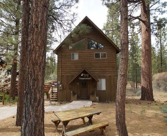 Ski Slope Retreat Picture Of Big Bear Cool Cabins Big