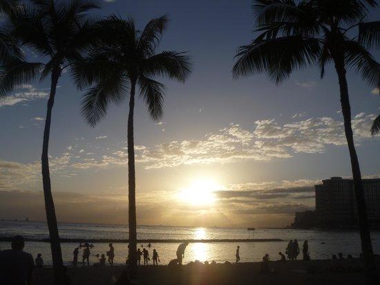 Aqua Skyline at Island Colony: Sunset on Waikiki Beach (what are you waiting for?!!)