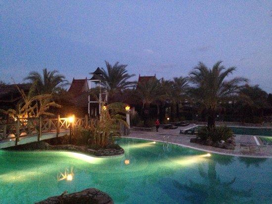 Royal Wings Hotel: Garden