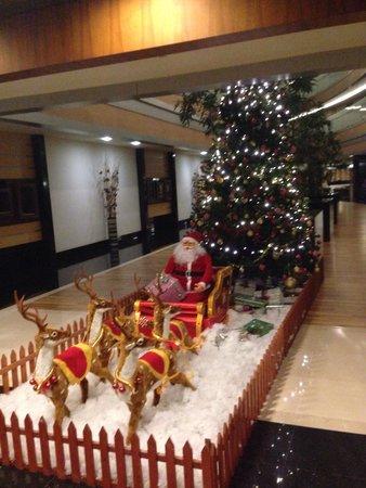 Royal Wings Hotel: Winter holidays