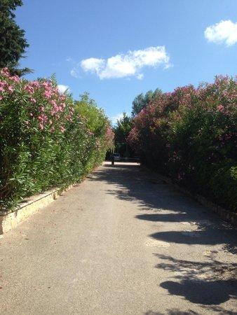 Baumaniere les Baux de Provence: The walk down the gravel road