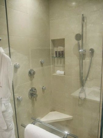 The Ritz-Carlton, Montreal: Shower