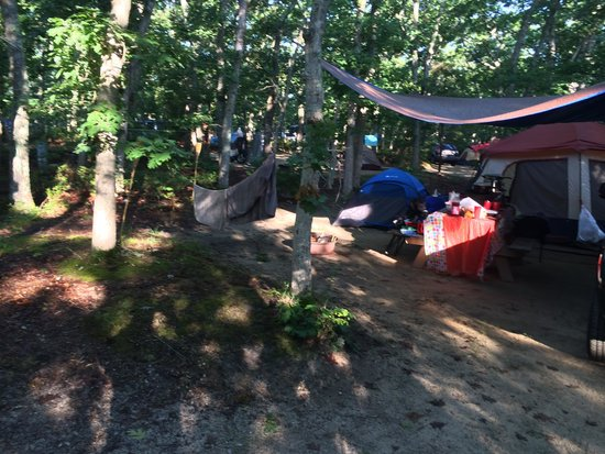 Martha's Vineyard Family Campground: Our site