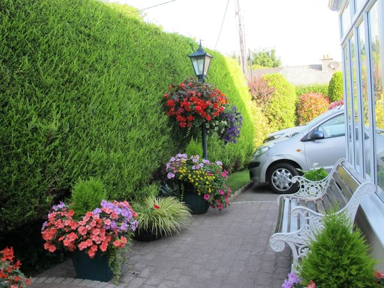 Bay View House Bed & Breakfast: gardens