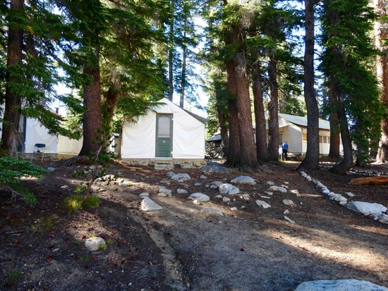 May Lake Trail tent cabins at May Lake High Sierra C& & tent cabins at May Lake High Sierra Camp - Picture of May Lake ...