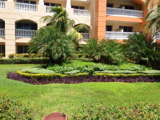 Iberostar Rose Hall Suites : Los jardines