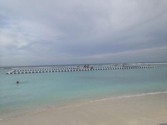 Fern Boquete Inn: beach