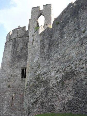 Chepstow Castle: Living walls!